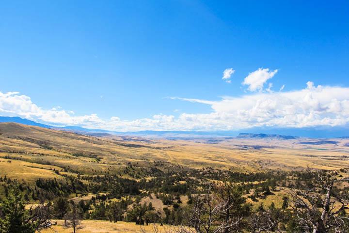 Montana_Ranch_Wild