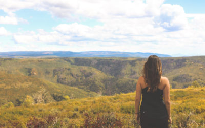 On Leaving Behind a Life You Love