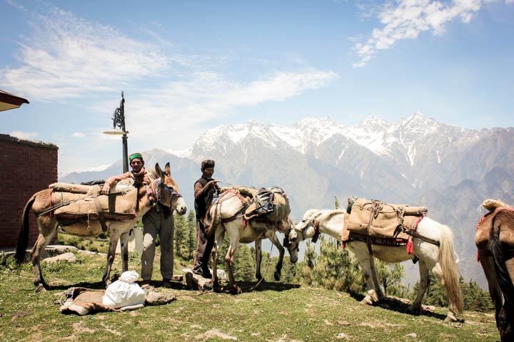 Trek_Indian_Himalaya_6
