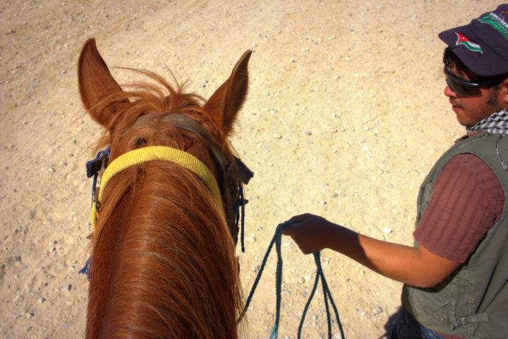 Petra on Horseback